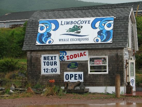 Limbo Cove Whale Excursions