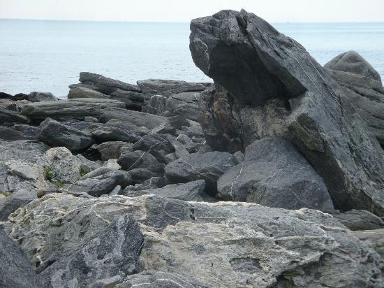Sachuest Point National Wildlife Refuge: 2
