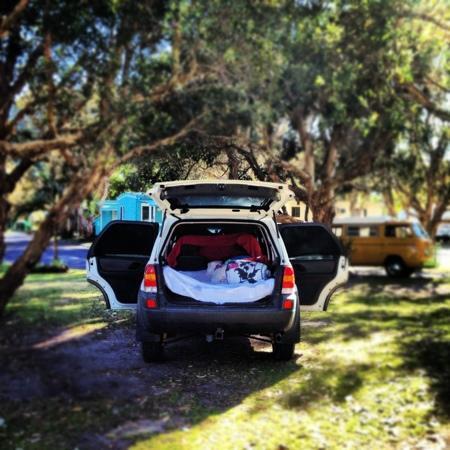 Discovery Parks - Byron Bay: her sov vi godt , under skyggen av trærene!