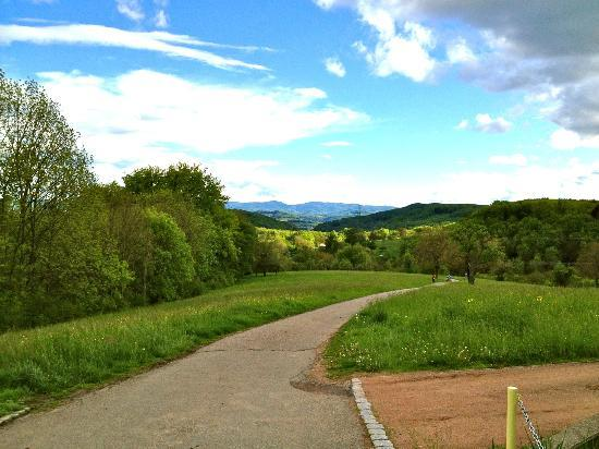 Landgasthaus-Hotel Maien: There is a walking trail around the village that offers spectacular views of the countryside.