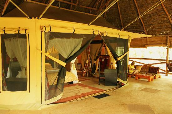 Mara Timbo Camp: I couldn't get enough of this tent...