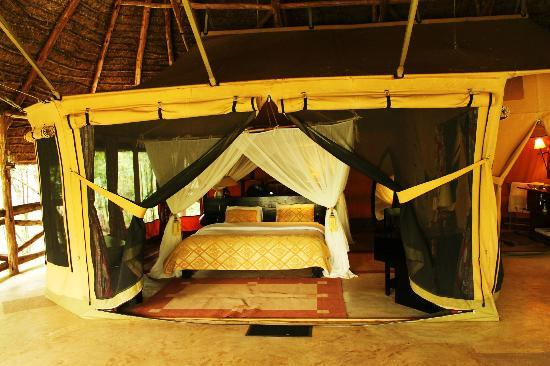 Mara Timbo Camp: Never expected to get such a comfortable bed right amidst the African bush