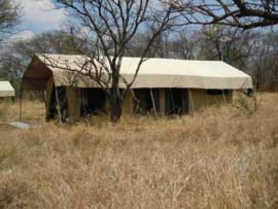Dunia Camp, Asilia Africa: Our tent