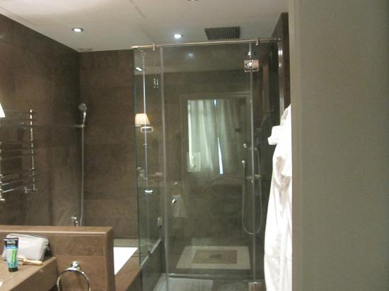 El Palace Hotel: Shower and bathtub available