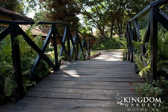 Kingdom Gardens Guest House: The walkway