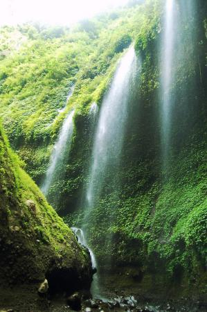 Probolinggo, Indonezja: Air Terjun Madakaripura