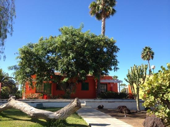 MRC Maspalomas Resort: Bungalows 1