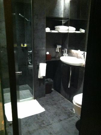 Holiday Inn Express New Delhi International Airport Terminal 3: Bathroom