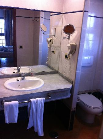 Hotel Diamante Suites: baño normalito