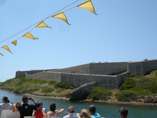 Yellow Catamarans: Fortezze che si affacciano sul porto