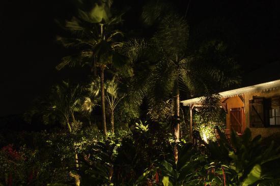 Villa les Bougainvilliers: Vue du studio et de son jardin depuis la piscine, la nuit