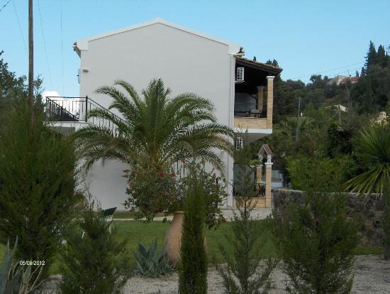 Achilleio, Yunani: Big palm