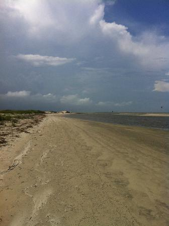 The Lodge on Little St. Simons Island: Your very own beach!