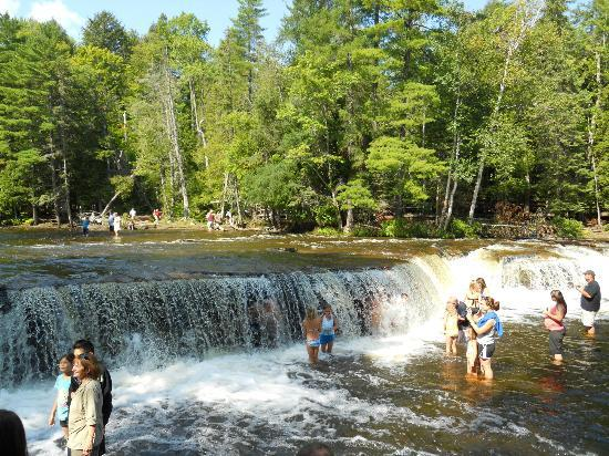 Tahquamenon Falls State Park Swimming In The Lower