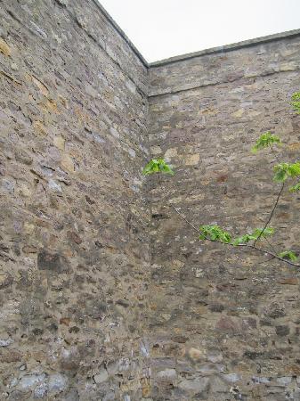 James A. Michener Art Museum: Prison Wall