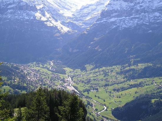Grindelwald from Bussalp