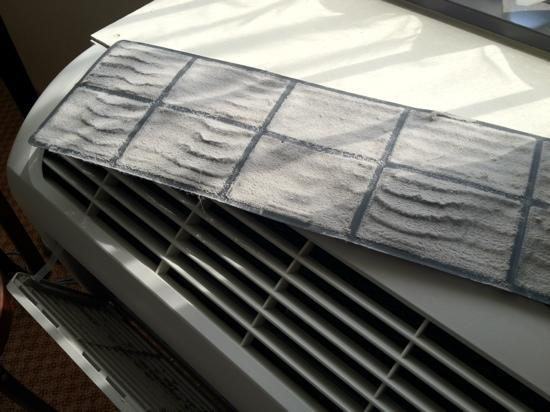 Quality Inn & Suites Palm Island Indoor Waterpark: maintenance needs to get on top of washing the HVAC filters more often.