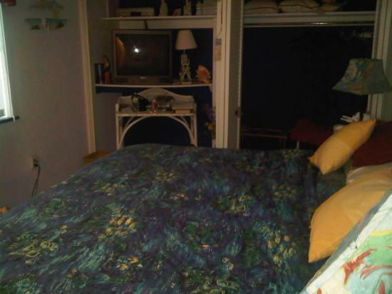 Ann Arbor Bed & Breakfast: room