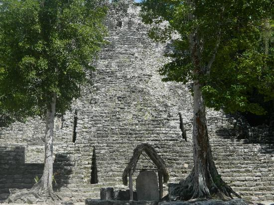 Alma's LDS Tours: Coba Ruins