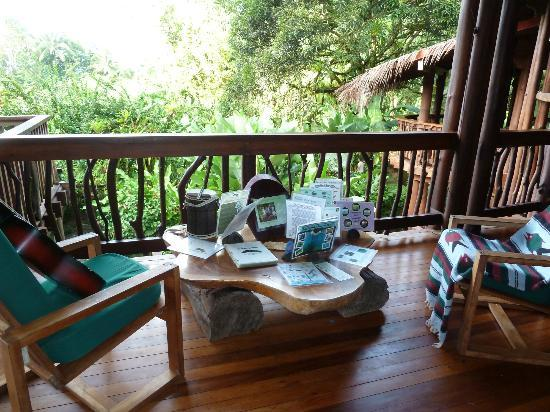 Playa Nicuesa Rainforest Lodge: Lots of information to learn about the flora an fauna!