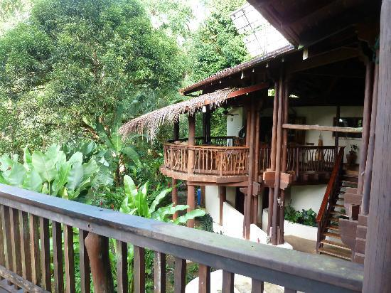 Playa Nicuesa Rainforest Lodge : The bar area of the lodge