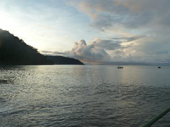 Playa Nicuesa Rainforest Lodge : Early morning from the pier