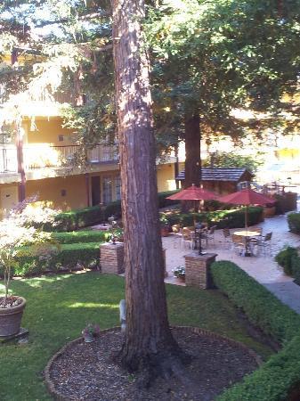 Embassy Suites by Hilton Napa Valley: Garden
