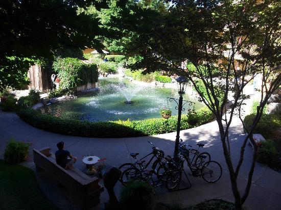 Embassy Suites by Hilton Napa Valley: Garden lake