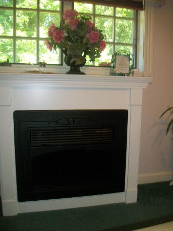 Pleasant View Bed and Breakfast: Working Fireplace