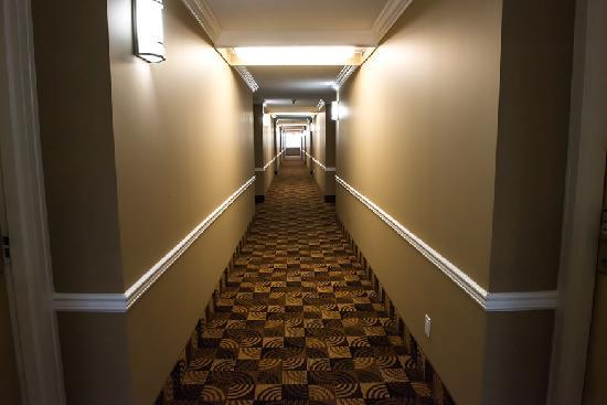 Coliseum Inn: Beautiful Bright Hallways