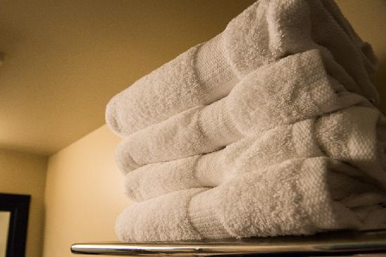 Coliseum Inn: Plush towels