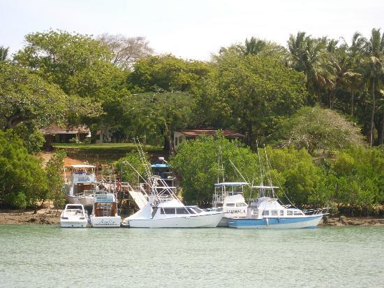 La Marina: Residential area n some boats direct opposite the restaurant