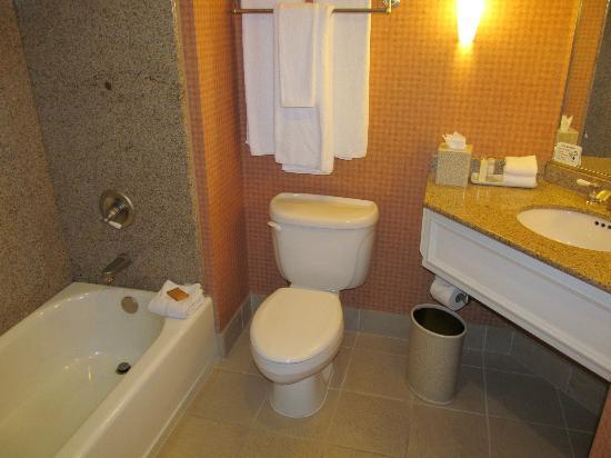 Hyatt Vineyard Creek Hotel: bathroom