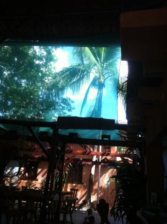 Rancho De La Playa: sun shade :) good for pasty Alaskans.