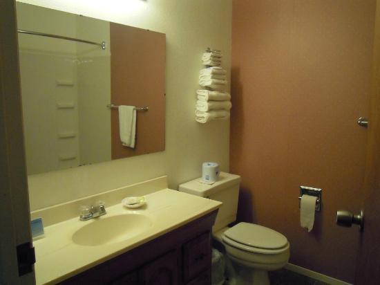 Yosemite Riverside Inn: Bagno spazioso