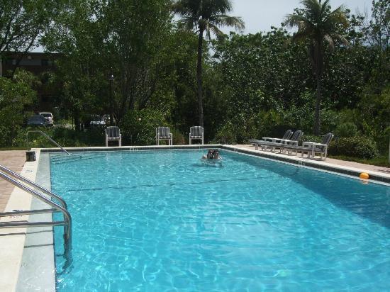 Pelicans Roost: Beautiful, large pool