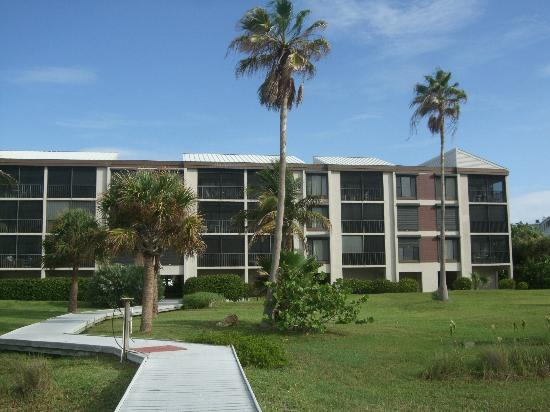 Pelicans Roost: View of units from the beach