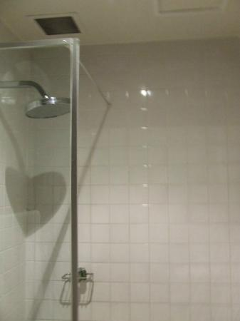1831 Boutique Hotel: Rainforest shower