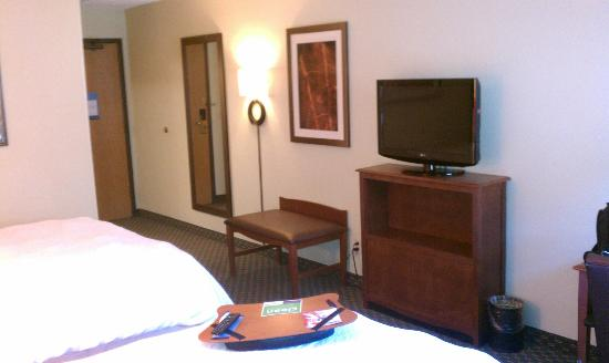 Hampton Inn Suites Detroit-Canton: Standard room w flat screen