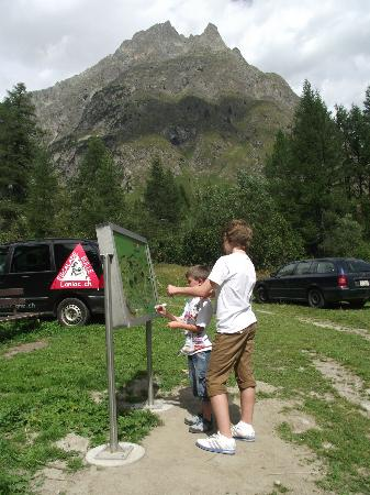 Camping Des Glaciers : Activities on a walk outside the campsite