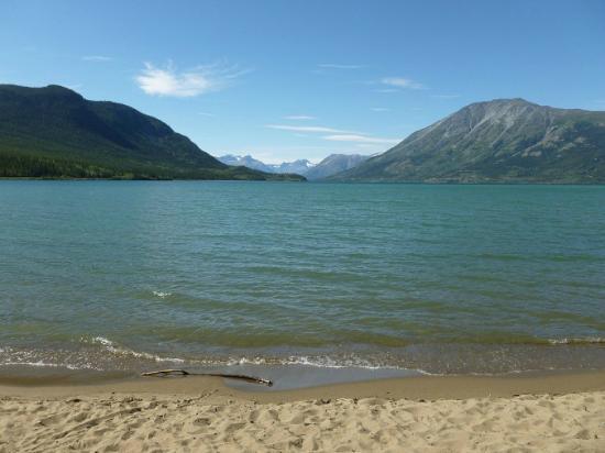 Carcross Desert: Bennett Lake Beach, Carcross, Yukon
