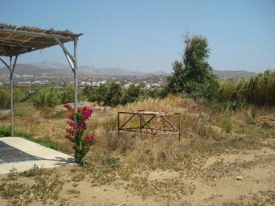 Naxos Kalimera Hotel:                   rough and ready
