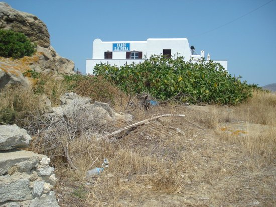 Naxos Kalimera Hotel:                   outside