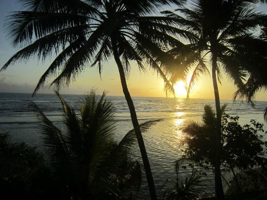 Barberyn Reef Ayurveda Resort: Utsikt från taket över revet.
