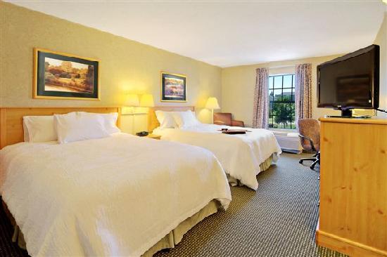 Hampton Inn & Suites Petoskey: Queen Double