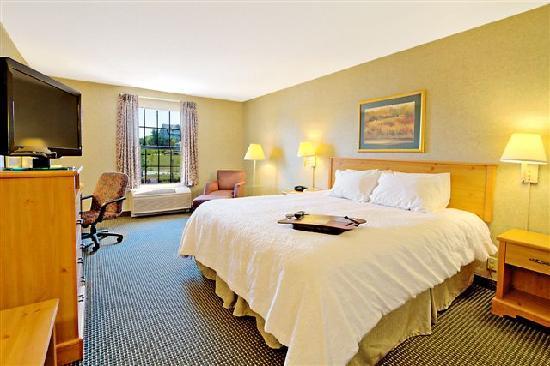 Hampton Inn & Suites Petoskey: King