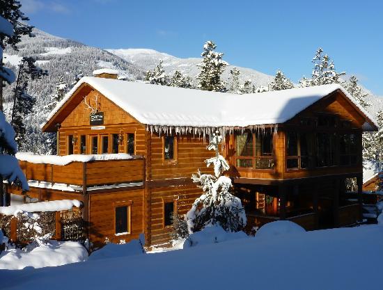 Cabin Restaurant : Greys restaurant, top floor of Earl Grey Lodge