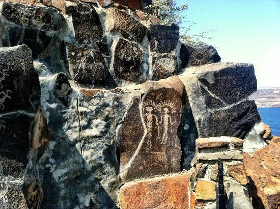 petroglyphs at ginkgo picture of ginkgo petrified forest state rh tripadvisor ca