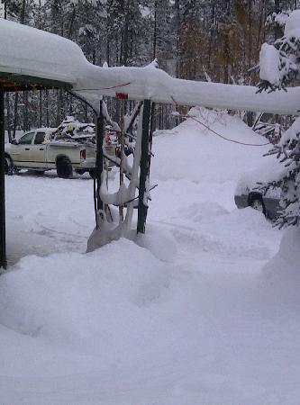 Stone Haven Inn B&B: A snowy moring at the B&B