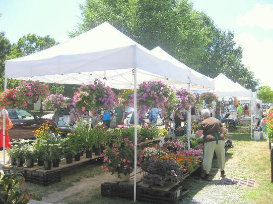 Saratoga Farmer's Market: Flowers in Bloom -- how I wish I can bring some home